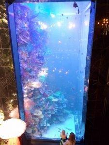 Восьмиметровий акваріум