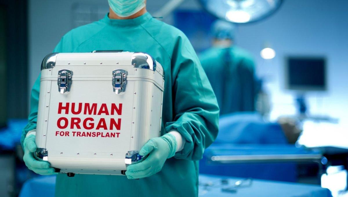 Кейс для органів