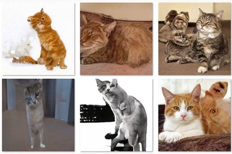 Нейромережа створила зображення котів. З людьми виходило краще