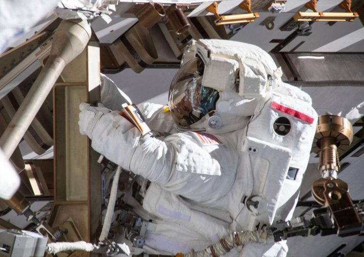 У NASA скасували перший «повністю жіночий» політ у космос через скафандр